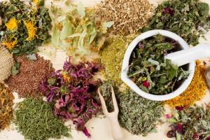 herbes médecinales