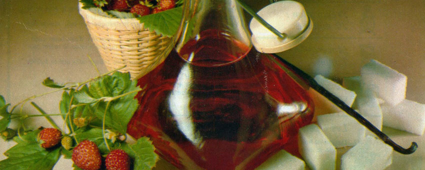 Liqueur cynorrhodons