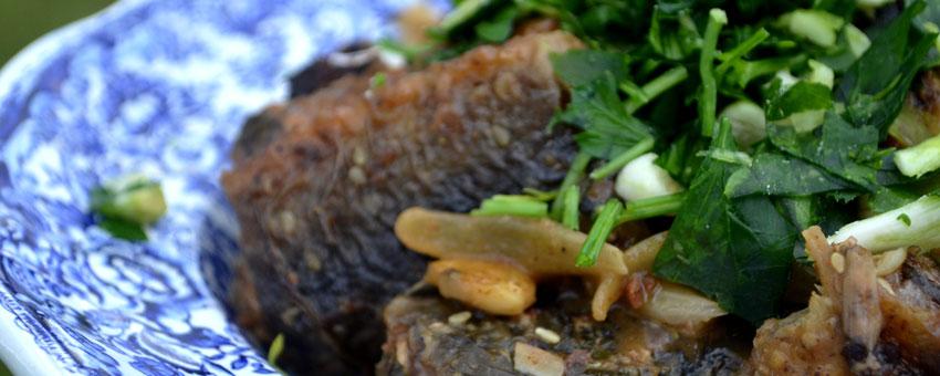 Anguilles à la provençale